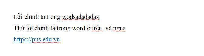Lỗi chính tả tiếng việt được phát hiện tự động trong word