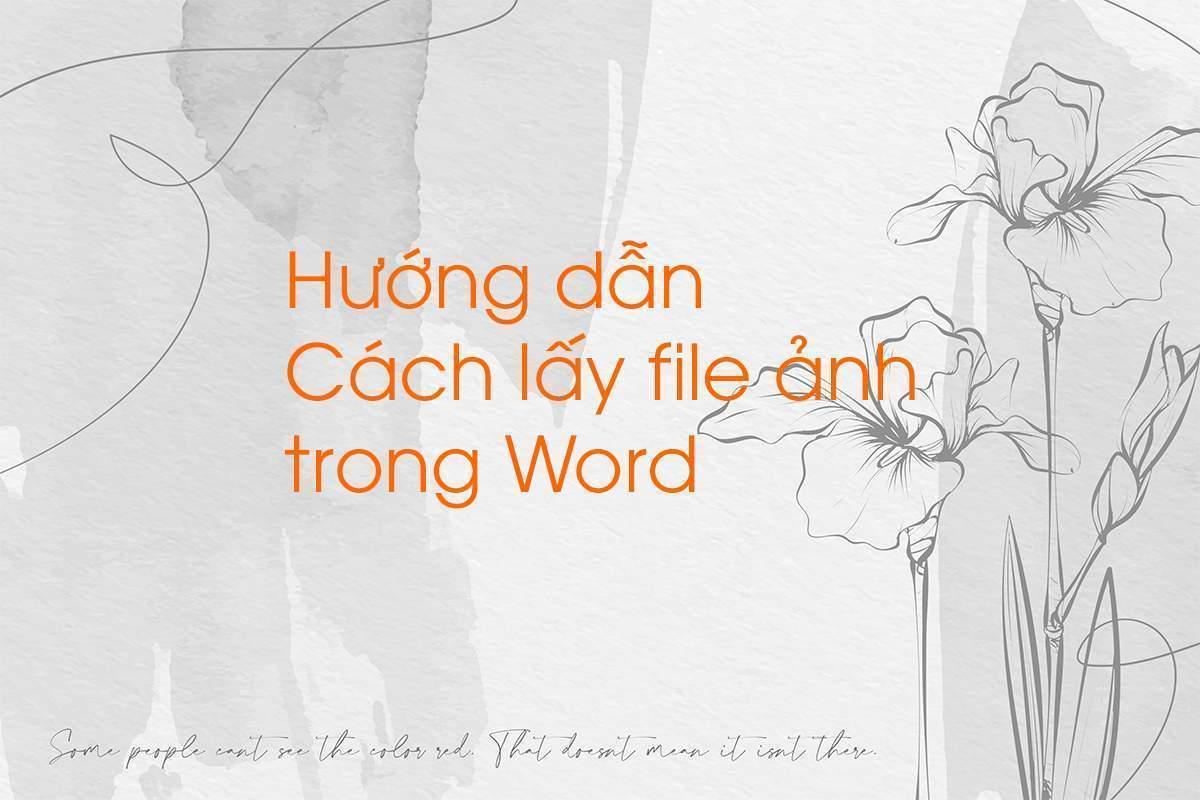 Cách lấy File ảnh trong Word